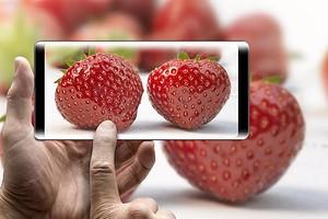 OLED-экран в смартфоне: почему это не всегда хорошо
